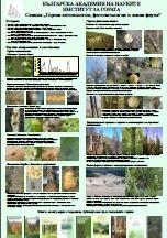 Gorska_entomologiya